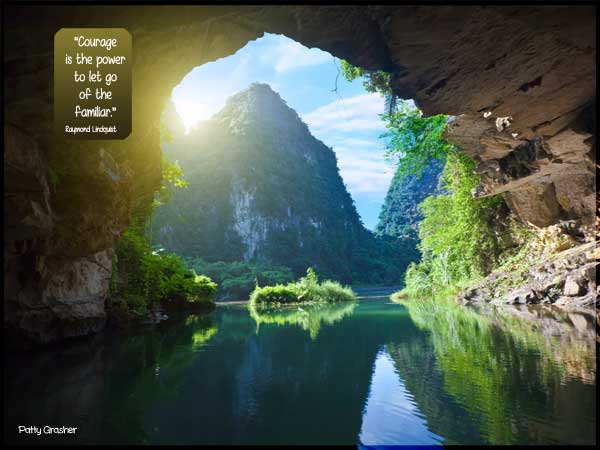 """Motivational quote: Courage is the power to let go of the familiar"""" Raymond Lundquist"""