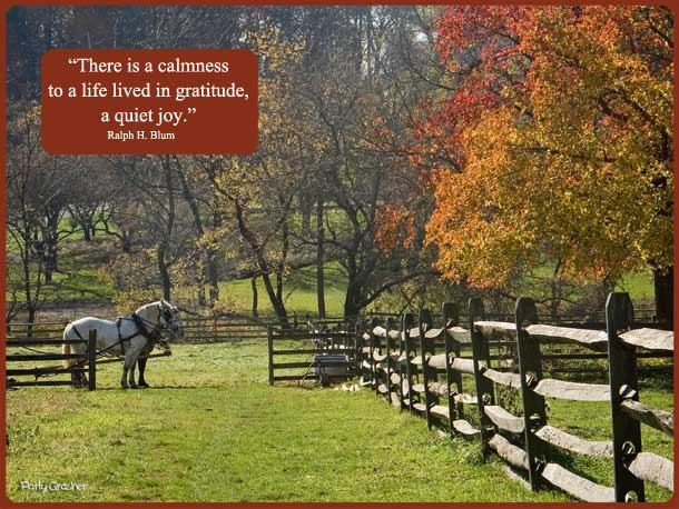 "Motivational quote: ""There is a calmness to a life lived in gratitude, a quiet joy."" — Ralph H. Blum"