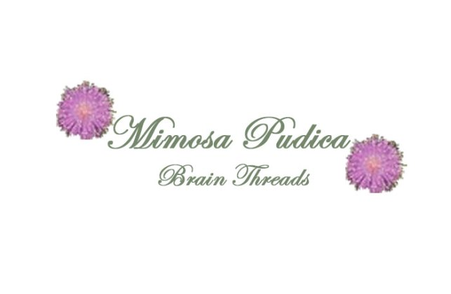 MimosaPudicaBrain