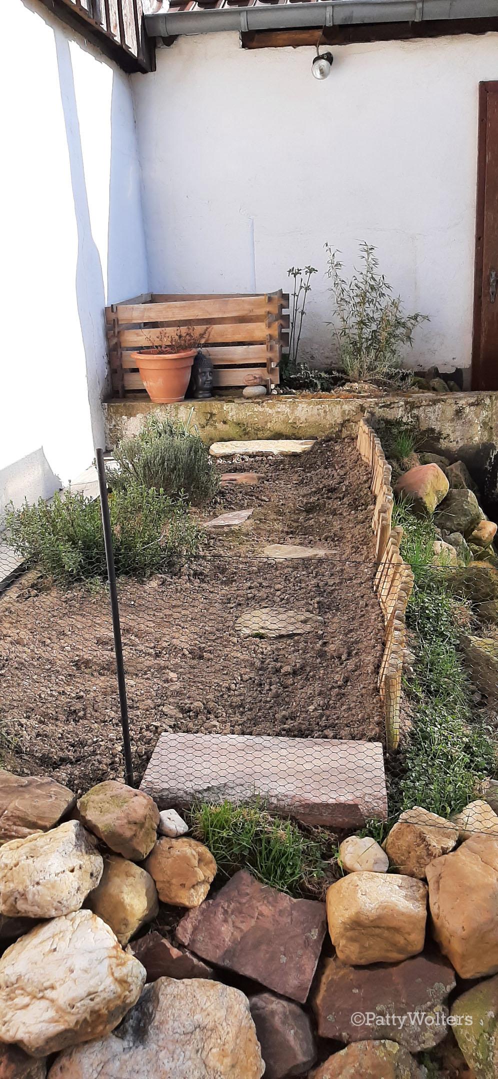 Vegetable plot 2021