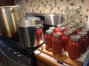 Thanks to my friend, Sherry, here's the outcome from a full day canning salsa!