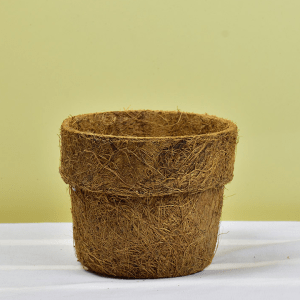 Coir Pot Medium