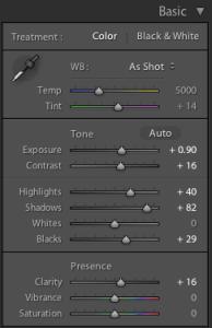 Adobe Lightroom 4 beta 2012 Basic Panel