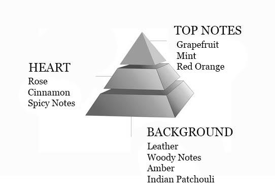 pyramide-olfactive-paris-la-nuit-homme