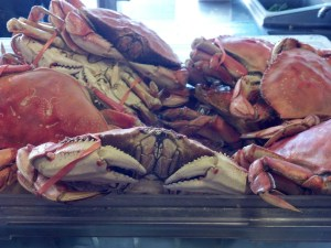 Dungeness crabs at  Fisherman's Wharf