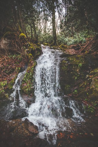 smoky-mountains-waterfall-photography-2