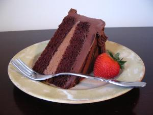 Photo of a slice of two-layer chocolate cake