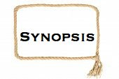 """Photo of a rope square labeled """"Synopsis"""""""