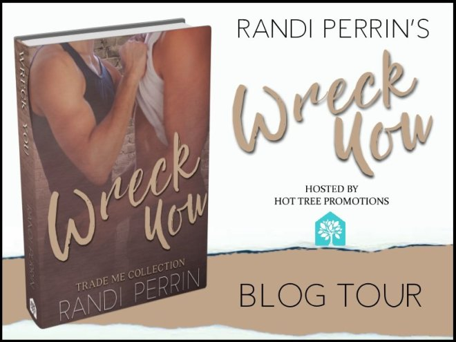Release Banner for Wreck You, by Randi Perrin