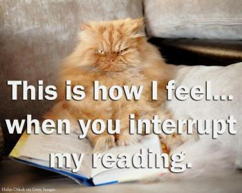 Pet Peeves while Reading-Interruption