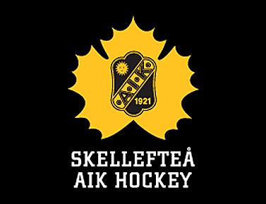SAIK_logo