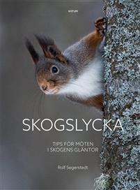 Skogslycka - Tips för möten i skogens gläntor Bokomslag