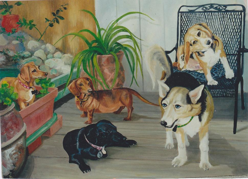 California dogs_0002