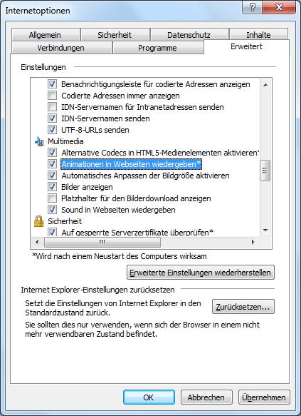 Dialogfenster erweiterte Internetoptionen im Internet Explorer