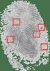 fingerprint-146242_640
