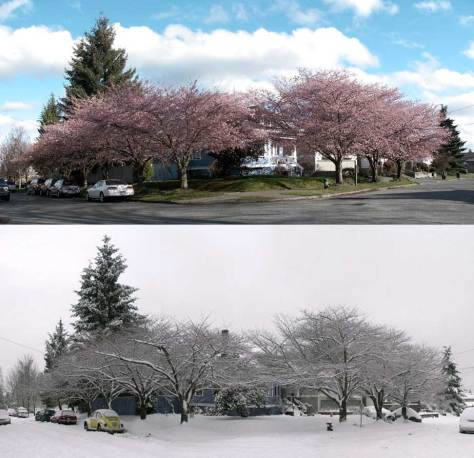 Looking southeast across the intersection of Corliss Avenue and 46th Street, twice: March 27, 2008, and December 21, 2008.