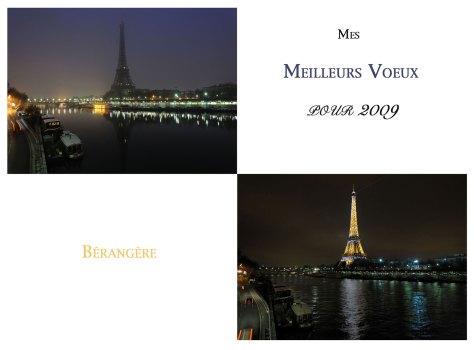 meilleurs-voeux-2009-1
