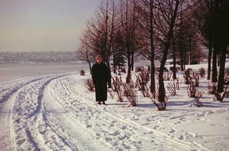x53-43-after-blizzard-ann-g-lk1