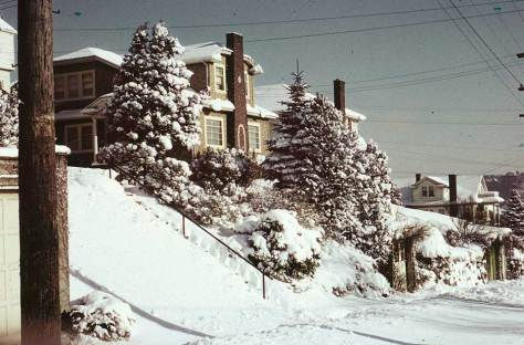 Seattle Camera Club member Horace Sykes' January  record of the 1950 snow