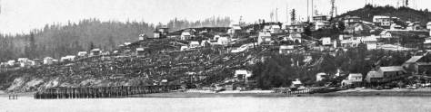 "Here's the ruins of what was once the largest structure in Seattle: the Pike Street coal wharf and bunkers.  It was photographed from the King Street Coal Wharf that replaced it in 1878.  This is but a detail of a pan of the city.  (This also appears in our Waterfront History Part 5, with a more detail description and in context too of more waterfront history.)  Note the south summit of Denny Hill on the right, and Queen Anne Hill on the left.  In between them is the north summit of Denny Hill, and running between the two ""humps"" of Denny Hill is Virginia Street.  The original for this is at the University of Washington's Special Collections."