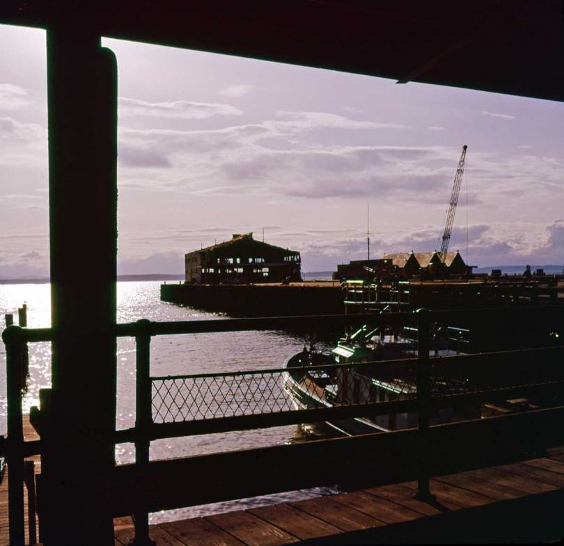 The water ends of both Pier 50 and 51 show in this May 29, 1962 look west from the shelter of the pergola at the foot of Washington Street. The police patrol boat appears through the railing. The last of the Pier 50 warehouse remains, but not for long. The Polynesian is nearly completed.