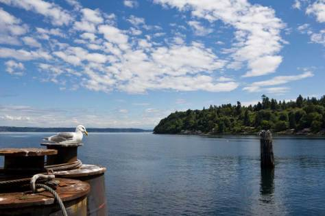 Nick's shot from the Vashon ferry on this beautiful day