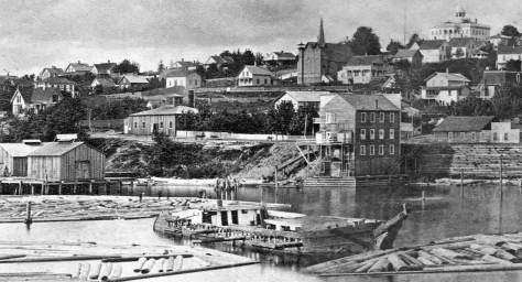 From is abiding affection for details in sharp old photos, Ron pulls a detail here from Peterson & Bros. 1878 record of the Seattle Waterfront taken the dogleg end of Yesler's Wharf.  Ron chose it for the cows sort of posing on Front Street (First Ave.)