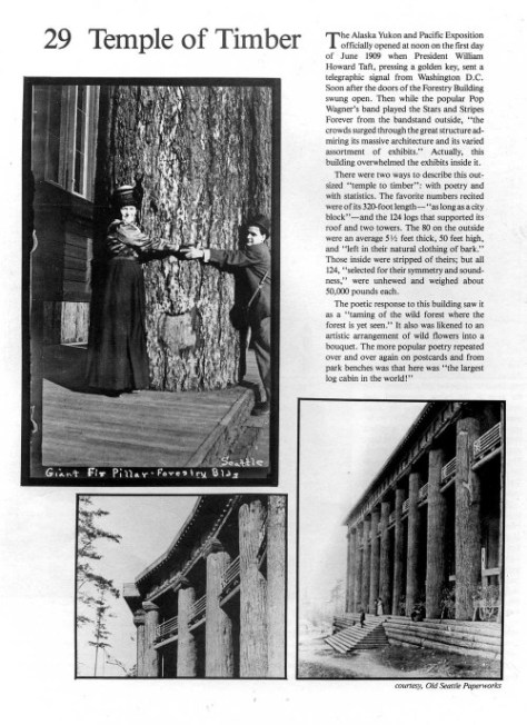 1. Temple-of-Timber-pg1-2-26-84