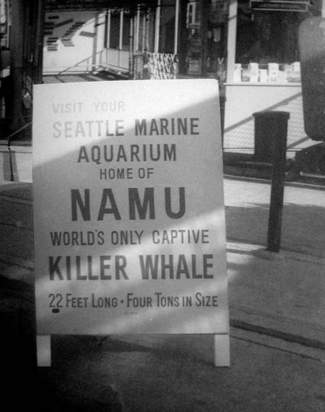 That intrepid Boeing retiree Werner Lengenhager's capture of the Namu's sidewalk sign.  (Courtesy, Seattle Public Library)