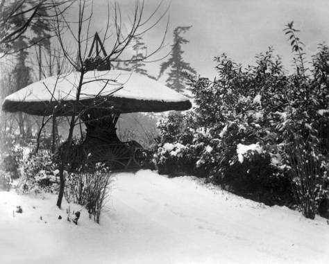 This snow covered mushroom comes from a collection of glass negatives photographed by the Queen Anne Duffy family in the first years of the 20th Century.  Consequently, this is most likely not the Big Snow of 1916.