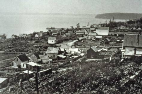 WATKINS look into Belltown from Denny Hill.  Compare this 1882 view with the one above it.  CLICK to ENLARGE