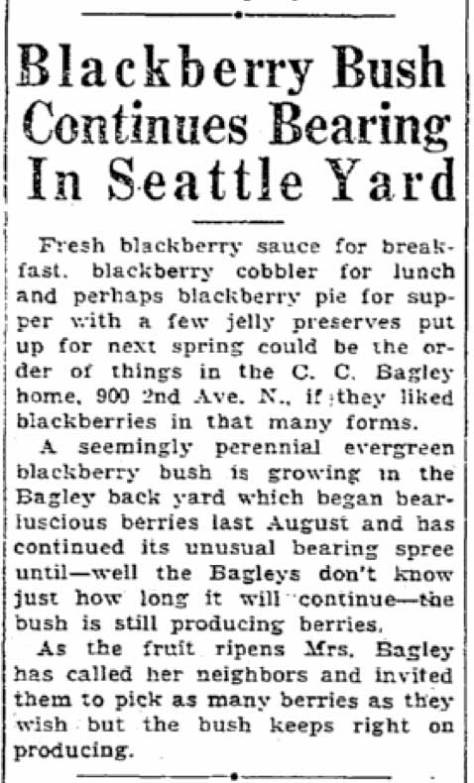 From the Times Dec. 7, 1933.