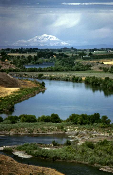 A Yakima Valley setting with Mt. Adams on the horizon.