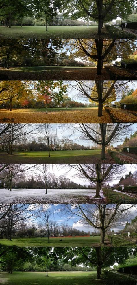 meridian-playfield-fall-of-fall-quartet-plus-three-blog-web