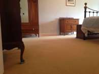Wool Carpet Cleaning & Stainshield