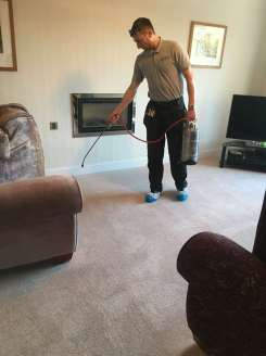 Wool carpet stainshield protection application