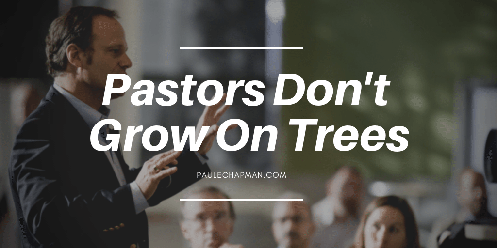 We Dont Go To Church: Because God is in the Trees