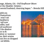 459. Kristen Cleage, Atlanta, GA - Full Sunflower Moon