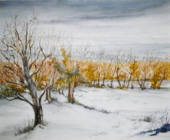 Autour du Villaret sous la neige - 11