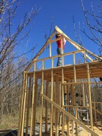 tiny cabin rafter 1