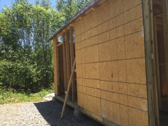 Tiny Cabin Back Wall Before