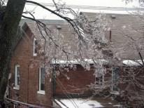 Ice Storm 2013: outside my window