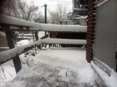 25cm in one day!