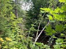 Natural Beauty Near Québec