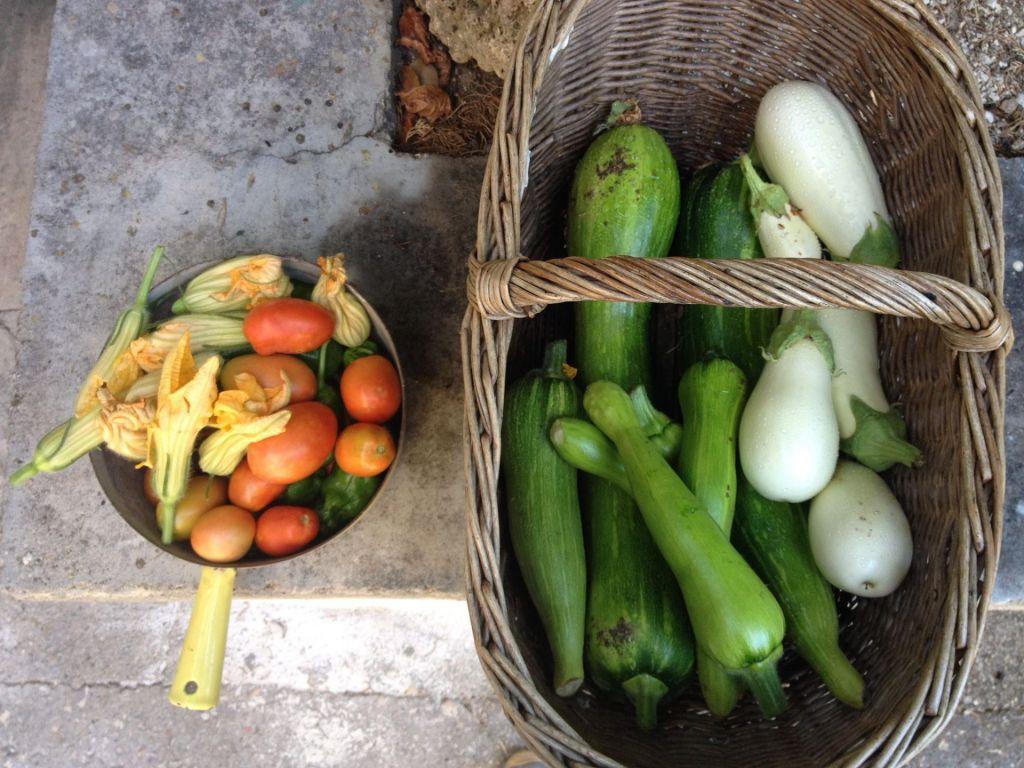Légumes Provence© C.Chillio - CRT PACA