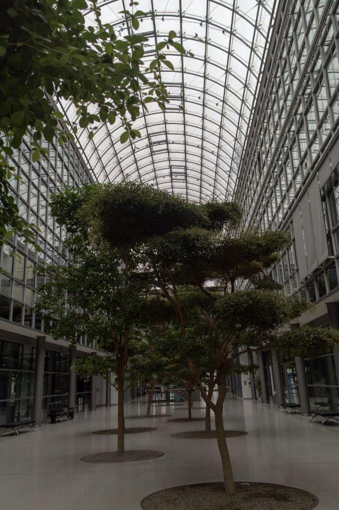 Wandelhalle mit Bäumen