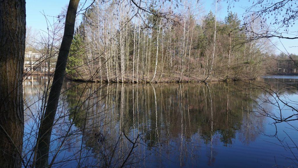 Die Seen mit ihren Birken könnte auch in Schweden fotografiert worden sein