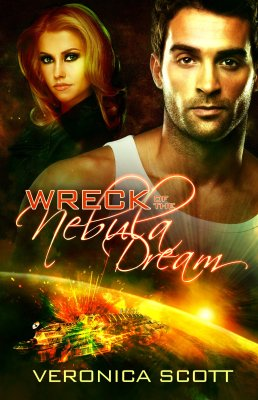 photo of cover of Wreck of Nebula Dream