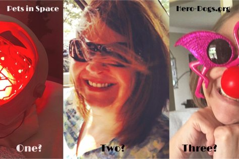 3 images of SFR author