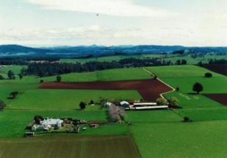 Sassafras farmland, Tasmania